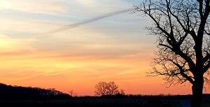 Sunrise8591