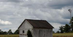 birds-barn