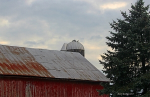 ChristmasBarn05Sept6691