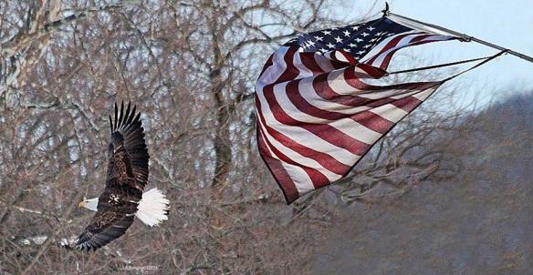 flag13.jpg