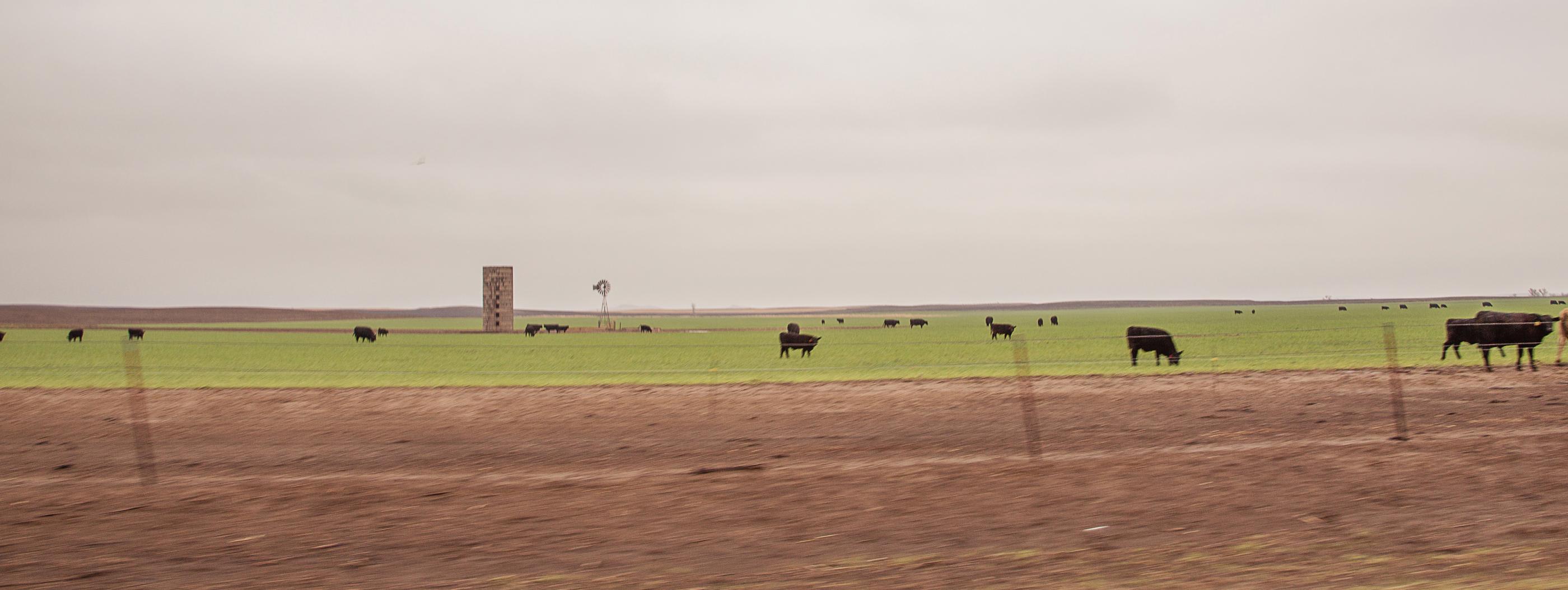 Kansas250.jpg