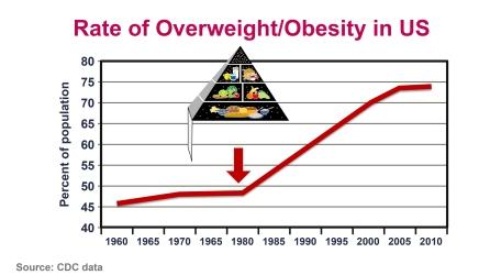 Bildresultat för Nina Teicholz Carbs and diabetes picture